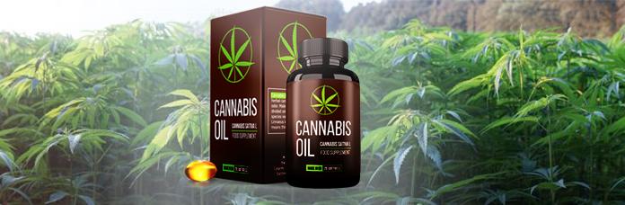 Cannabis Oil opiniões